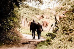 Old people walking in the woods - moving for seniors
