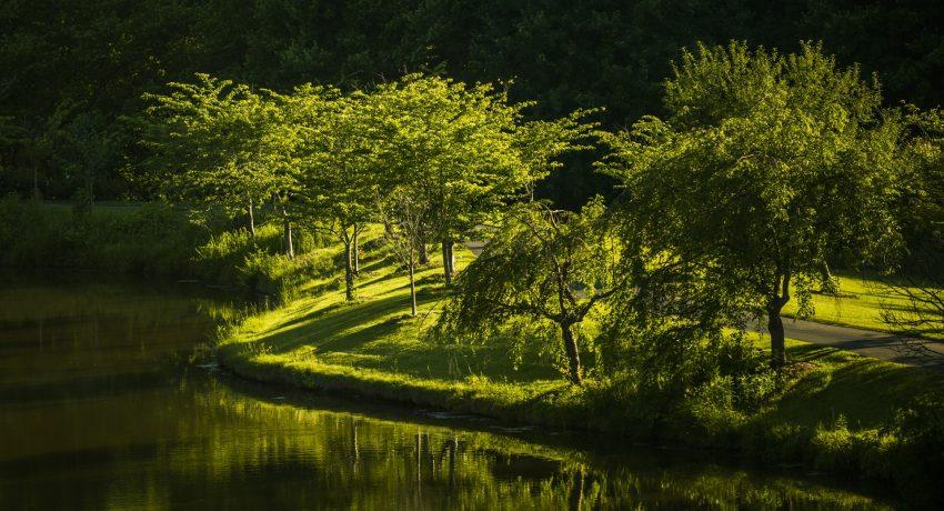 Virginia landscape.