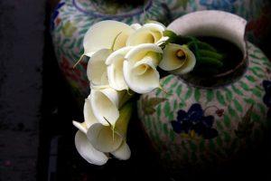 A broken vase.